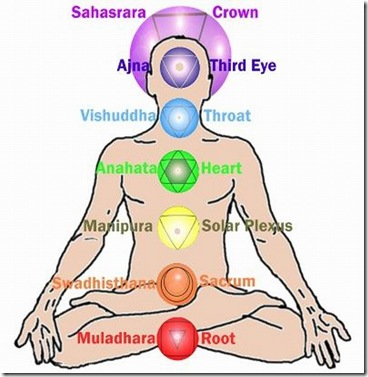 CHAKRAS~FOR~WEB1